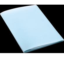 Папка пластик С 10 пр/вкл. PROFF Standard 0,45мм