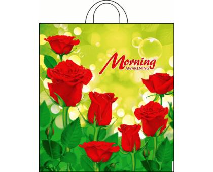 Пакет пет. 38*42  (интерпак) Утро 1/25/500 ПНД